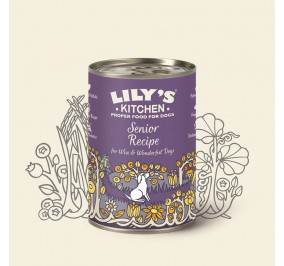 Lily's Kitchen dog Senior 400gr