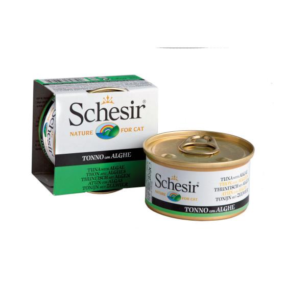 Schesir Cat Boite 85g Thon et Algues