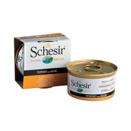 Schesir Cat Box 85g Tuna and Aloe
