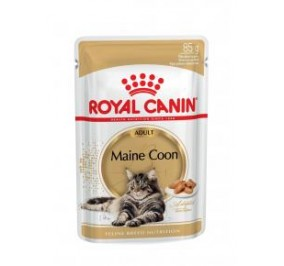 Royal Canin chat Humide Breed Maine Coon 85gr