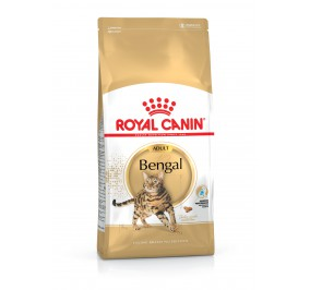 Royal Canin chat BREED BENGAL  10kg