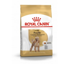 Royal Canin dog Sp_cial Caniche Adult  500g