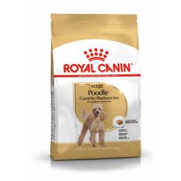 Royal Canin dog Spécial Caniche Adult 1,5Kg