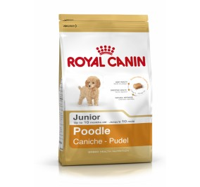 Royal Canin dog Sp_cial Caniche Junior 3Kg