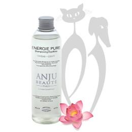 Anju Shampoo Pure Energy 250ml