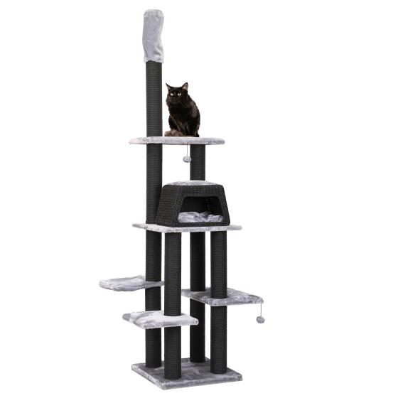 SP Tree has Cats Blacky Varys